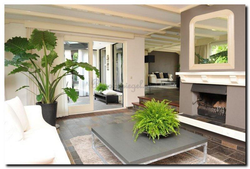 Spiegel keuze en kenmerken van een botanisch interieur - barokspiegel