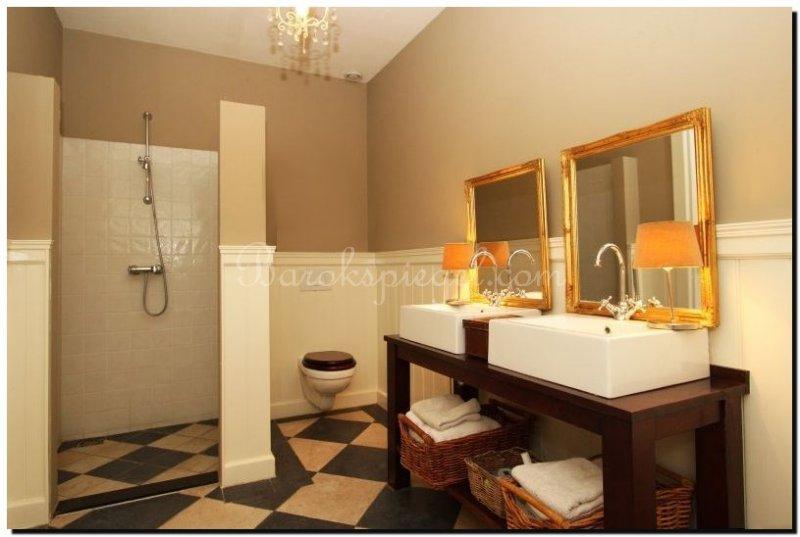Spiegel ethan buitenmaat 66x76cm - Barok spiegel voor badkamers ...