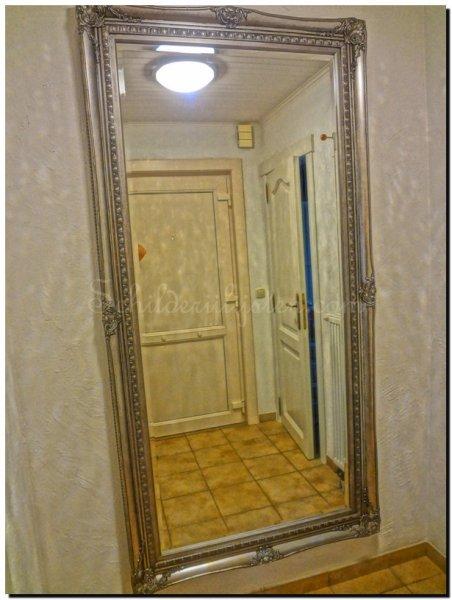 Franse stijl spiegel rico antiekzilver barokspiegel for Grote zilveren spiegel