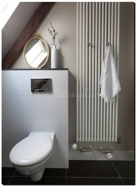 Geef je wc of toilet extra sfeer met een spiegel for Wc spiegel shop